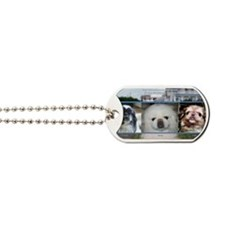 Cover2011 Dog Tags