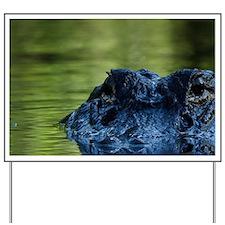 American alligator (Alligator mississipp Yard Sign