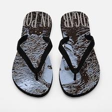 Edgar Allan Poe Flip Flops