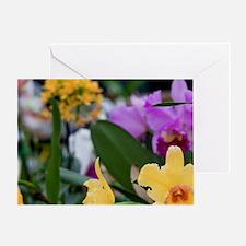 Orchid, Haiku Maui Orchids, Haiku, U Greeting Card