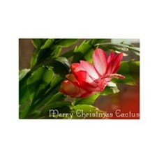 Christmas Cactus Cards Rectangle Magnet