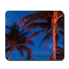 South Beach Palms / EveningSouth Beach,  Mousepad