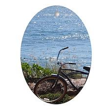 Northwest coast now walking and bike Oval Ornament