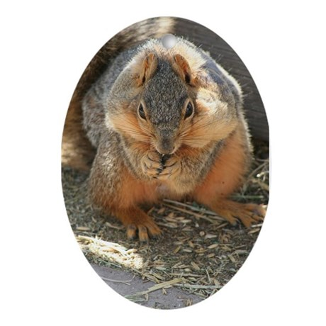 Cheeky Squirrel Oval Ornament