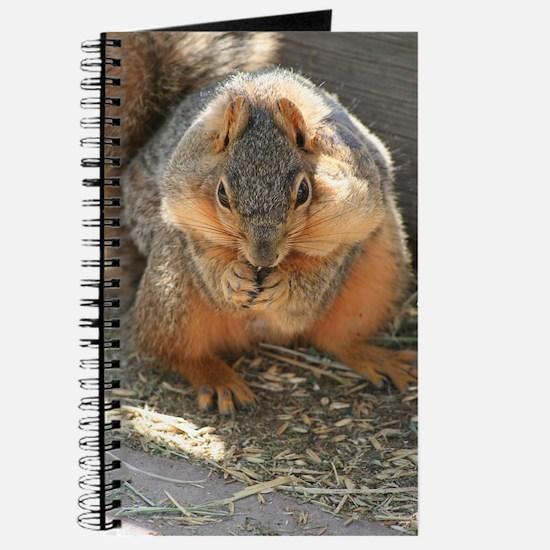 Cheeky Squirrel Journal