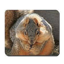 Cheeky Squirrel Mousepad