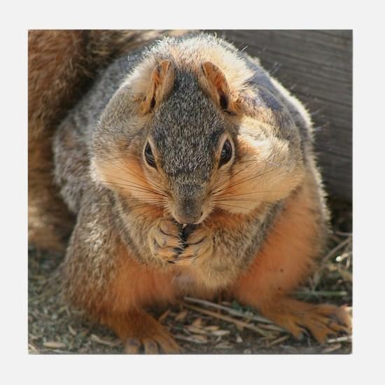 Cheeky Squirrel Tile Coaster
