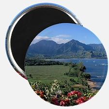 Hanalei Kauai Hawaii Magnet