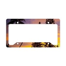 Norfolk Pine, Sunset, Kaneohe License Plate Holder