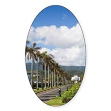 Brigham Young Morman Temple, Laie,  Decal