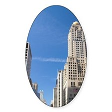 Tulip flowers growing in the city o Decal
