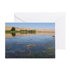 Fish kill on the Snake River in Idah Greeting Card
