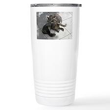 2 Cats Sleeping in Autumn Sunsh Travel Mug