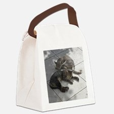 2 Cats Sleeping in Autumn Sunshin Canvas Lunch Bag