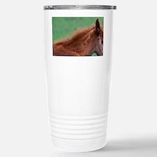 Georgia, Cumberland Island. Wil Travel Mug