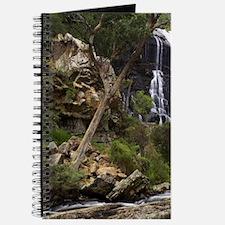 MacKenzie Falls, Grampians National Park,  Journal