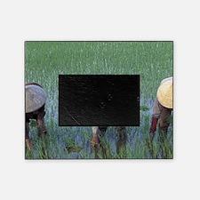 Asia, Vietnam, South Vietnam, Mekong Picture Frame