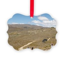 Mountain Bikers Ornament
