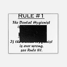 Rule Dental Hygienist Picture Frame