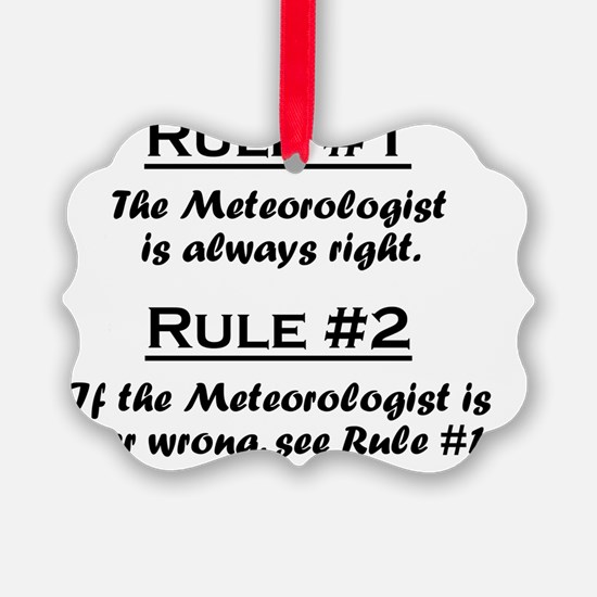 Rule Meteorologist Ornament