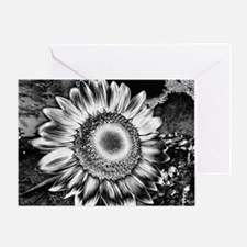 calendar contrasting sunflower Greeting Card
