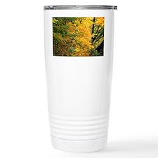 55_5_662_edit Travel Mug