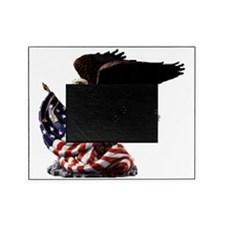 eagle1huge clean5 Picture Frame