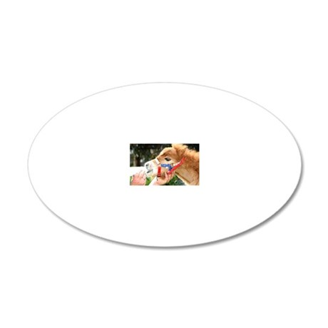 Orphaned Foal - Joy 20x12 Oval Wall Decal