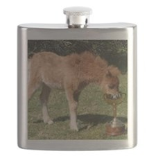 Orphaned Foal - Joy Flask