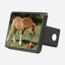 Orphaned Foal - Joy Hitch Cover
