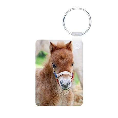 Orphaned Foal - Joy Aluminum Photo Keychain