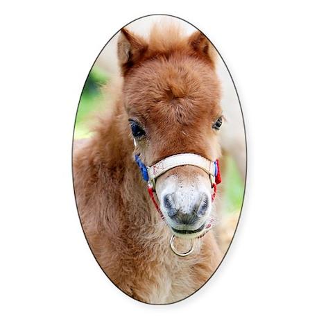 Orphaned Foal - Joy Sticker (Oval)