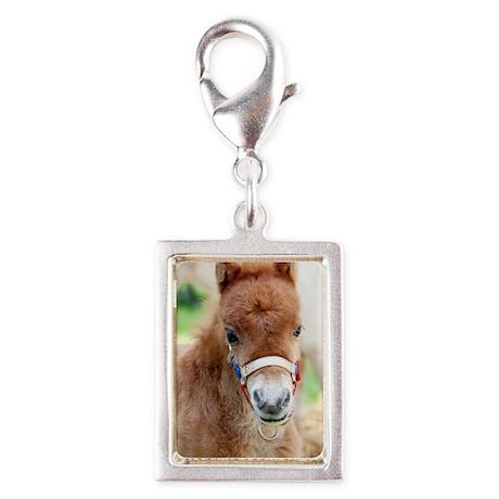 Orphaned Foal - Joy Silver Portrait Charm