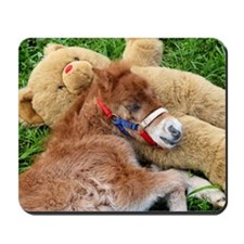 Orphaned Foal - Joy Mousepad