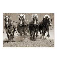 4 Horsepower Postcards (Package of 8)