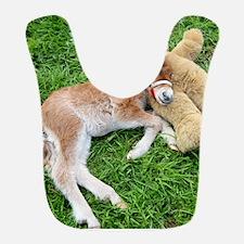 Orphaned Foal - Joy Bib