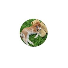 Orphaned Foal - Joy Mini Button