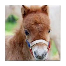 Orphaned Foal - Joy Tile Coaster