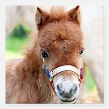"Orphaned Foal - Joy Square Car Magnet 3"" x 3"""