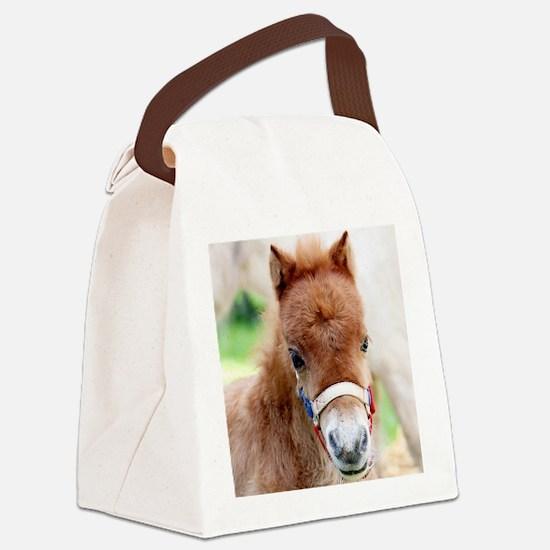 Orphaned Foal - Joy Canvas Lunch Bag