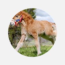 "Orphaned Foal - Joy 3.5"" Button"