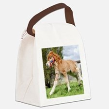 Orphaned Foal - Joy Canvas Lunch Bag