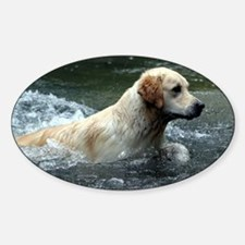 Labradoodle post Decal