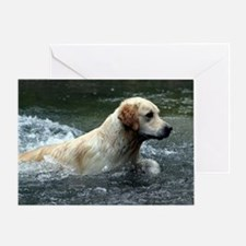 Labradoodle post Greeting Card