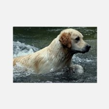 Labradoodle note Rectangle Magnet