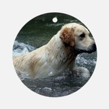 Labradoodle note Round Ornament