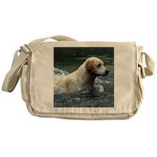 Labradoodle pillow Messenger Bag