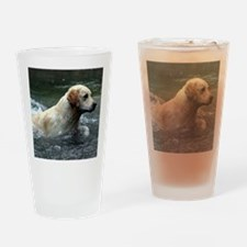 Labradoodle pillow Drinking Glass