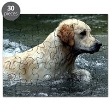 Labradoodle pillow Puzzle