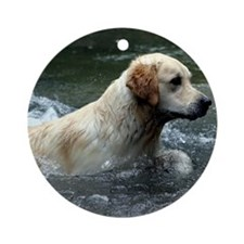 Labradoodle pillow Round Ornament